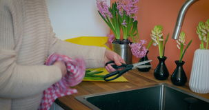 Washing the Pruning Scissors. A woman rinses and wipes of a pair of scissors. Plant vases with hyacinths stand lined up behind the kitchen sink stock video