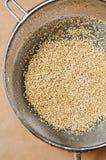 Washing quinoa Royalty Free Stock Images