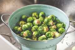 Washing raw Brussels sprouts in kitchen sink.  stock images