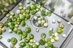 Washing raw Brussels sprouts in kitchen sink.  royalty free stock photography