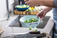 Washing raw Brussels sprouts in kitchen sink.  stock photography