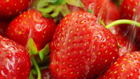 Washing Strawberries With Water. stock video footage