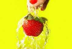 Washing Strawberry Royalty Free Stock Photos