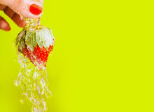 Washing Strawberry Stock Images