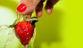 Washing Strawberry Stock Photos