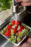 Washing Strawberrys. Stock Photo