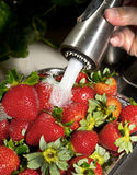 Washing Strawberrys. Royalty Free Stock Photos