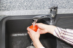 Washing a tomato Stock Photography