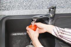 Washing a tomato Stock Photography