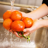Washing Tomatoes. A detail image of washing tomatoes at home in the sink Stock Photo