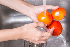 Washing Tomatoes Royalty Free Stock Image