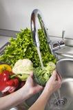Washing vegetables Stock Images