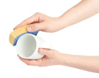 Washing white cup with sponge Royalty Free Stock Photography