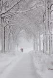 Washington, bufera di neve di DC Fotografie Stock Libere da Diritti