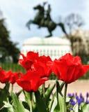 Washington, C C Fotografía de archivo libre de regalías