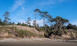 Washington Coast Afternoon Imágenes de archivo libres de regalías