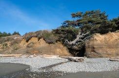 Washington Coast Afternoon. Pacific Ocean At the Washington Coast Stock Images