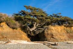 Washington Coast Afternoon. Pacific Ocean At the Washington Coast Royalty Free Stock Photo