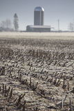 Washington Corn Field in Winter Royalty Free Stock Photo