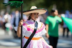 The Fiesta DC Parade royalty free stock photography