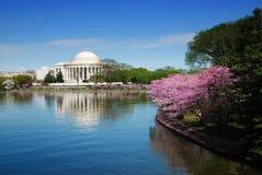 Washington DC royalty free stock photography