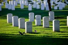 WASHINGTON DC - Arlington nationell kyrkogård Royaltyfria Bilder