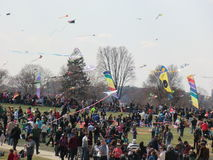 Washington DC blossom kite festival. At the grounds of Washington Monument Stock Photography