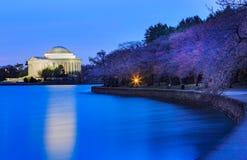 Washington DC Blue Hour Cherry Blossoms royalty free stock photos