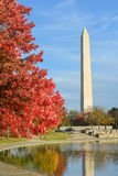 Washington DC, Constitution Gardens in Autumn Stock Image