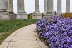Washington DC de colonnes de capitol de passage couvert de chute Photographie stock