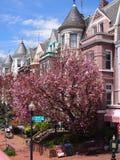 Washington DC de Georgetown Fotografía de archivo