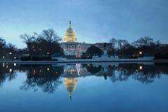 Washington DC dell'albero di festa di alba degli Stati Uniti Campidoglio Immagine Stock Libera da Diritti