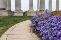 Washington DC delle colonne del Campidoglio del passaggio pedonale di caduta Fotografia Stock