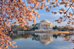 Washington DC en resorte Foto de archivo libre de regalías