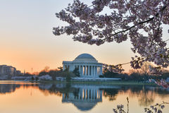 Washington DC - Gedenkteken Jefferson in de lente Stock Afbeelding