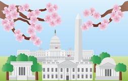 Washington DC-Grenzsteine mit Kirschblüte Lizenzfreies Stockfoto