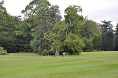 Washington DC, il 5 agosto: Parco della Casa Bianca da Washington District di Colombia fotografia stock libera da diritti