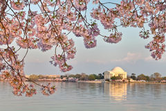 Washington DC Jefferson Memorial Royalty Free Stock Photo