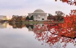Washington DC Jefferson Memorial Autumn Royalty Free Stock Image