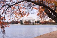 Washington DC Jefferson Memorial in autunno Fotografie Stock Libere da Diritti