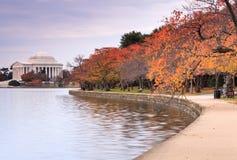Washington DC Jefferson Memorial in autunno Fotografia Stock Libera da Diritti