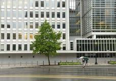 Washington, DC - June 04, 2018: Pedestrians with an umbrella near The World Bank main Building in Washington. stock photos