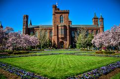 Washington DC - Kwitnący magnoliowych okwitnięć drzewa, ogródy i obramia Smithsonian kasztel na national mall wewnątrz fotografia stock