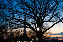 Washington, DC Monument at Night Royalty Free Stock Photography