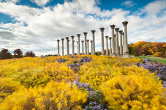 Washington DC National Capitol Columns National Arboretum Royalty Free Stock Photos