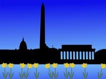 Washington DC in primavera illustrazione di stock