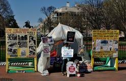 Washington, DC: Protester at Lafayette Park Royalty Free Stock Photos
