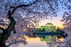 Washington DC Springtime Stock Photos