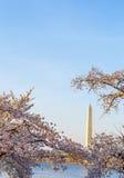 Washington DC USA Monument Royalty Free Stock Photos