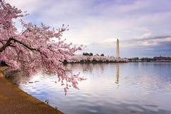 Washington DC Royalty Free Stock Images